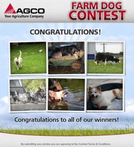 Farm Dog Contest Winners