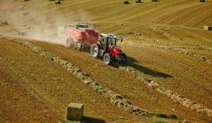 Introducing the Square Baler Classification System