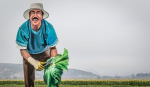 A Farmer's Perspective: Immigrant Workers and Their Critical Role