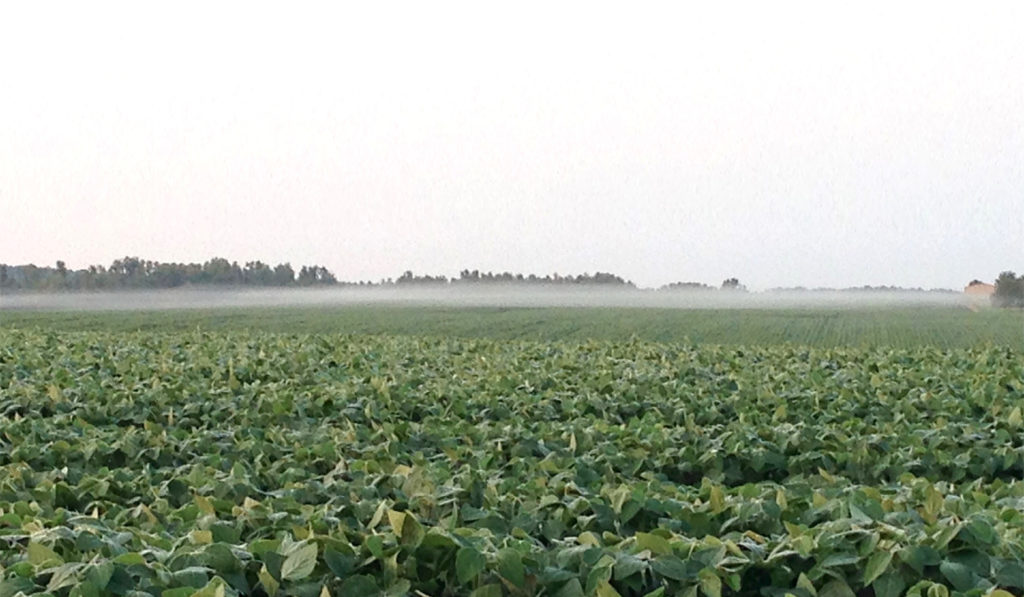 Ground fog hanging over a crop field is one sign of a temperature inversion.