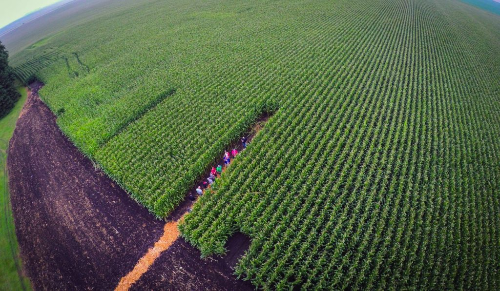 The AGCO crop tour tested precision agronomics.