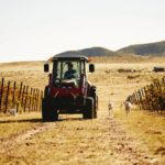 Jim Gardner drives his Massey Ferguson 1560 Seriesversatile tractor on is vineyard in Arizona.