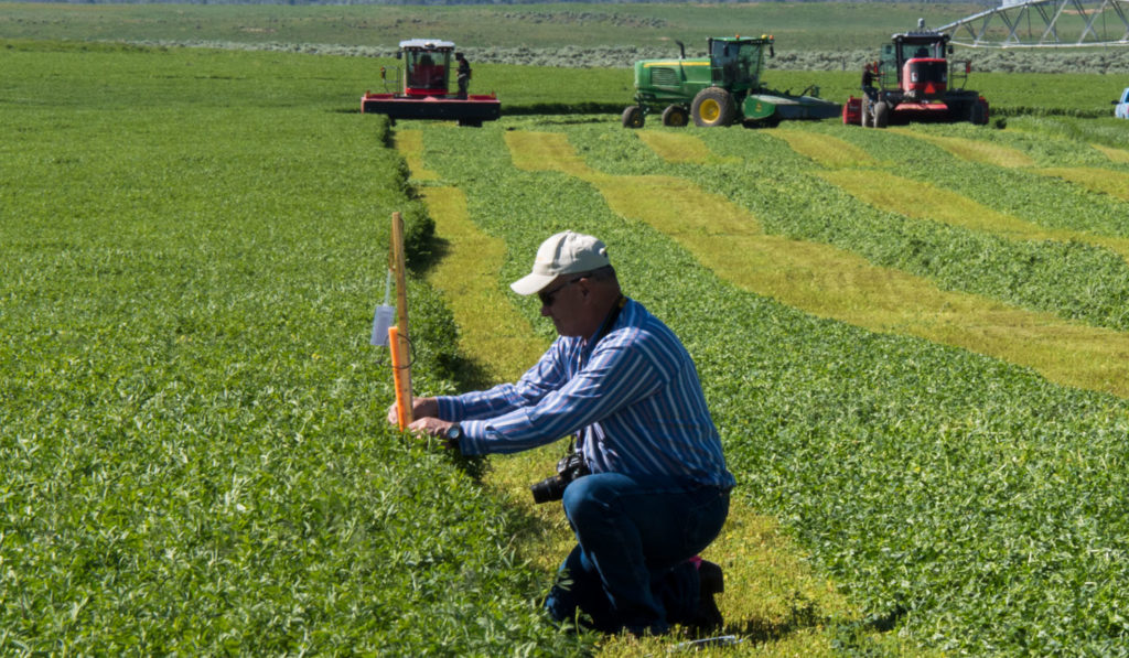 Achieving better quality hay and increased profitability with