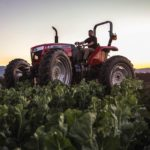 Maximize versatility with the MF4620M High-Clearance Tractor