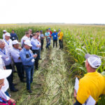 AGCO Russia Crop Tour 2017