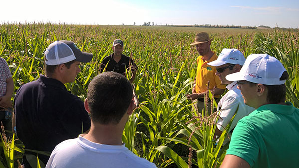 Jens, from AGCO agronomy and farm solutions team, in the field educating farmers on how to maximize profit by using technology to increase yield and reduce costs.