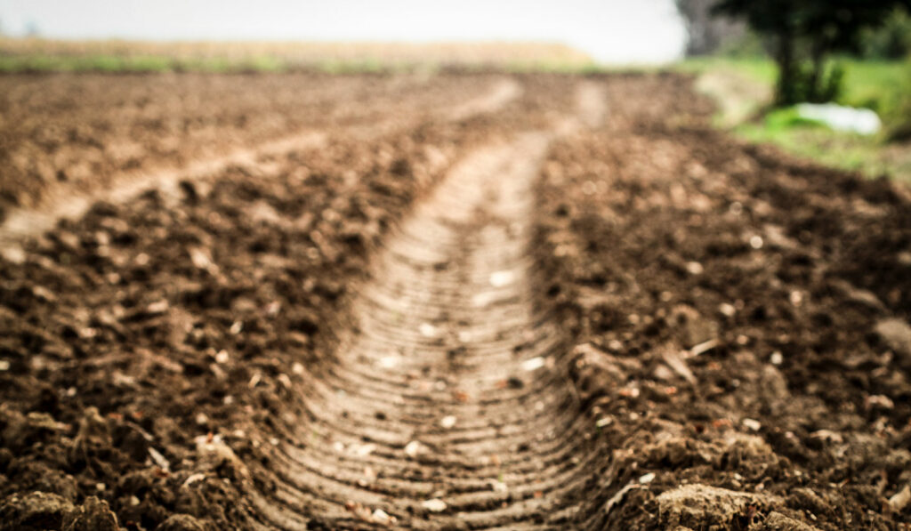 A Deep Dive into Soil Compaction