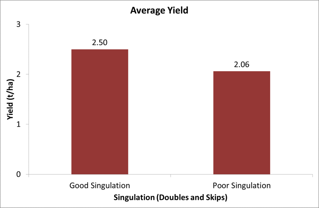 Poor singulation reduced Sunflower yield by an average of 21%.